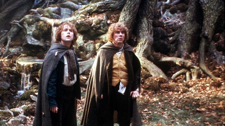 Bild ur filmen Sagan om Ringen.
