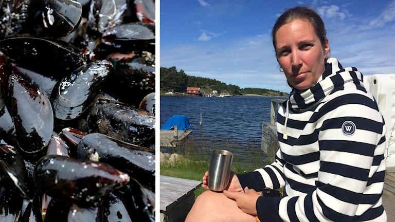 Närbild på blåmusslor och en bild på forskaren Åsa Strand.