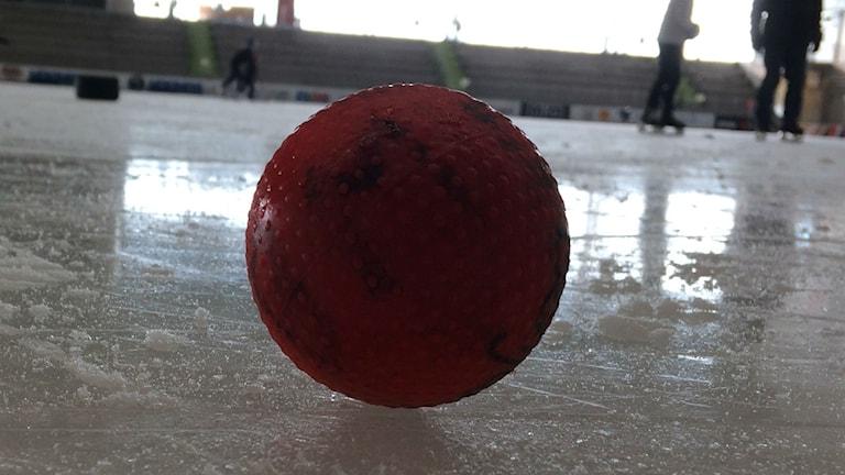 Bild på bandyboll.