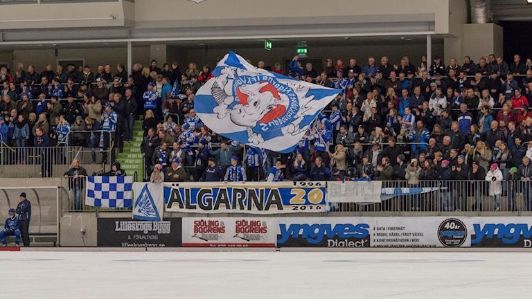 Bandy IFK Vänersborg Älgarna Flagga