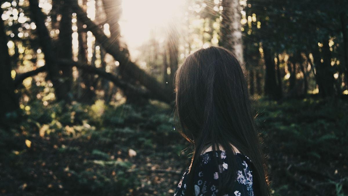 Bild tjej i skog
