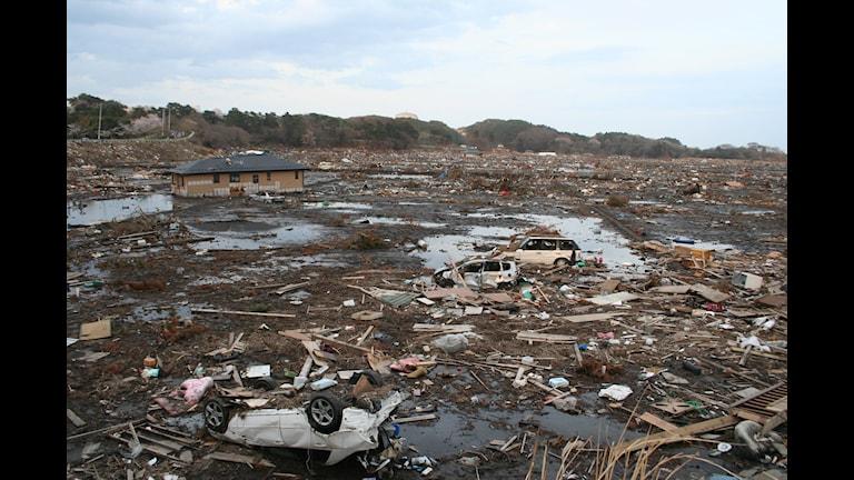 Varför skänker vi helst pengar till plötsliga katastrofer? Foto: Karin Olander/TT