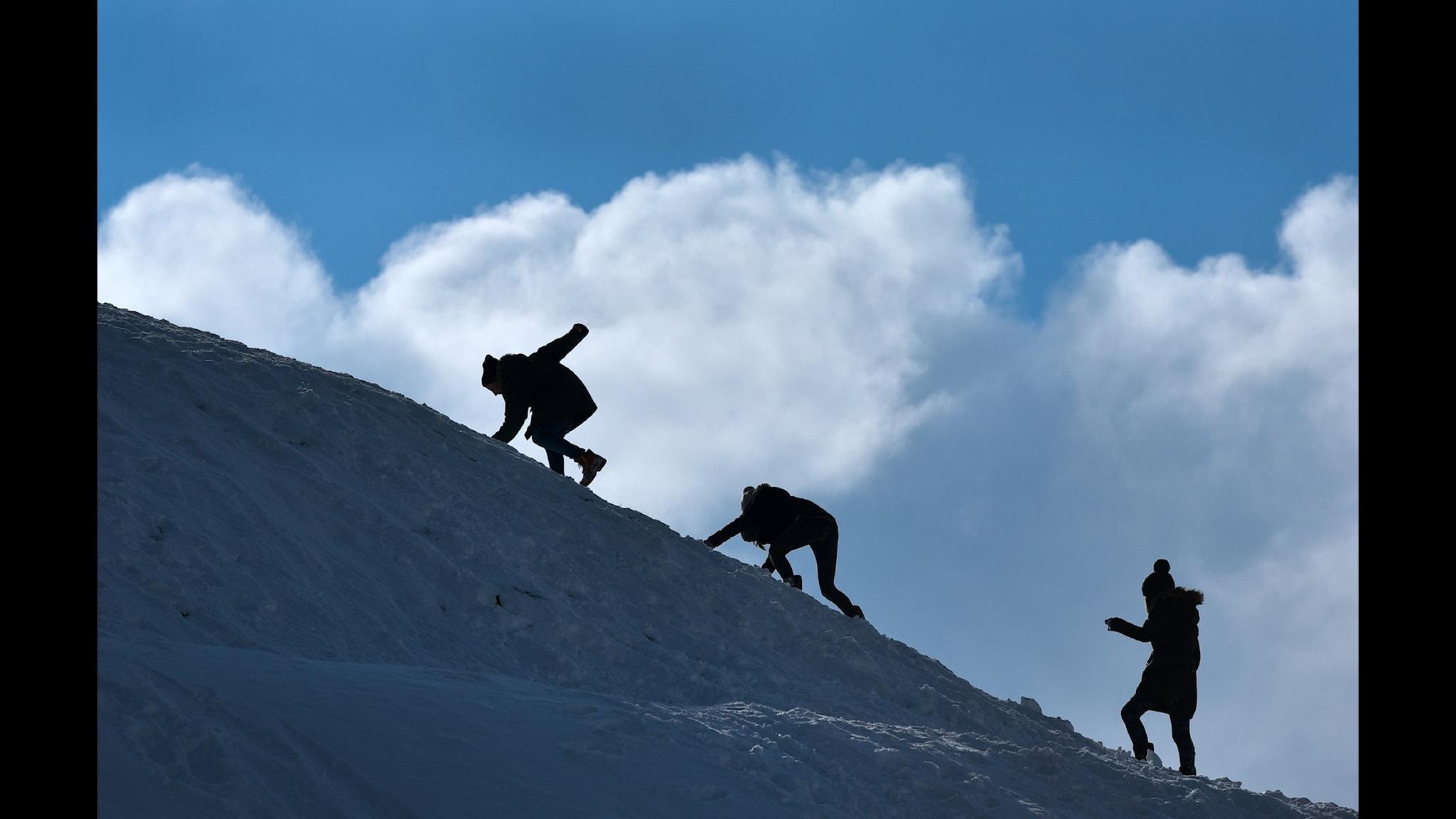 Barn klättrar på snöklätt berg Foto: Uwe Zucchi/TT