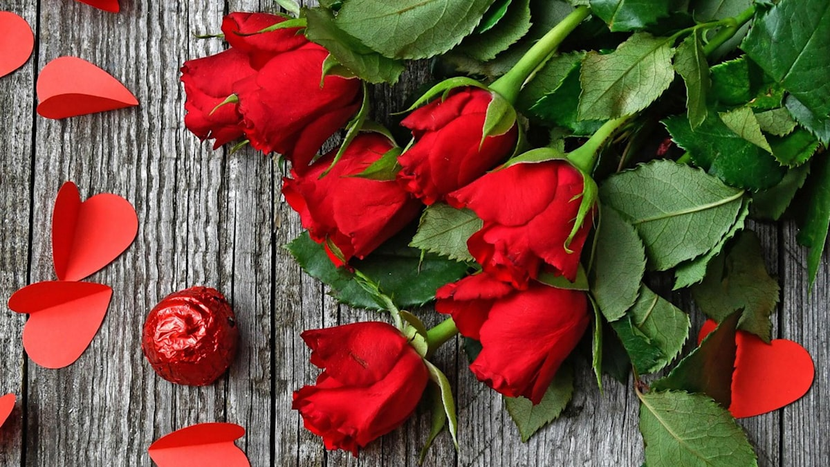 Röda rosor och en pralin inslagen i rött papper, samt röda pappershjärtan