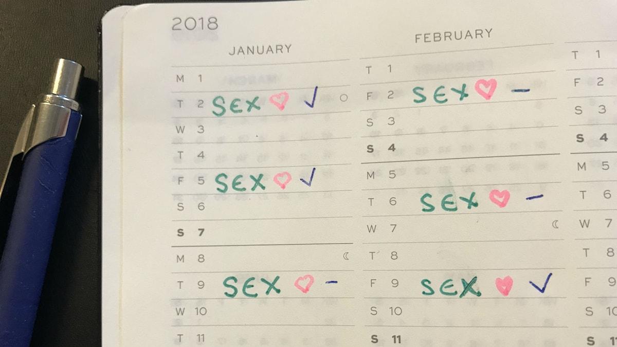 En kalender med inplanerade dagar för sex