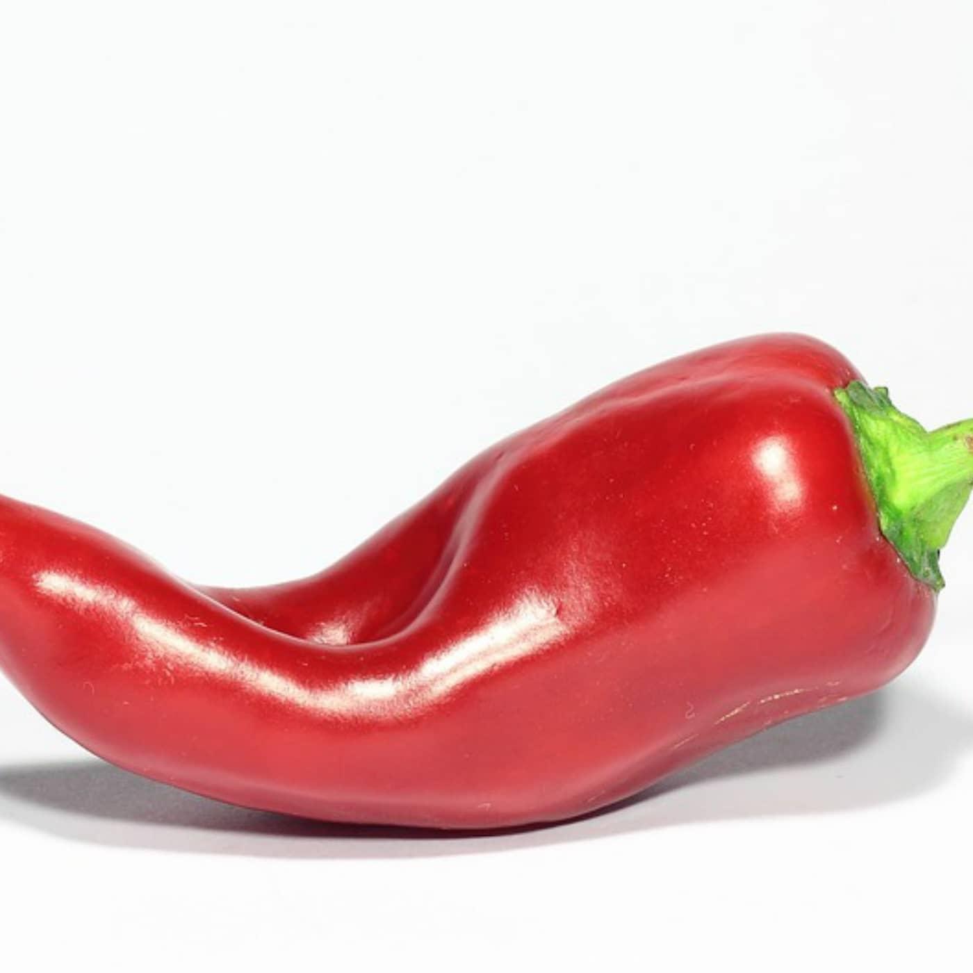 Chilipepparn – en het paradox