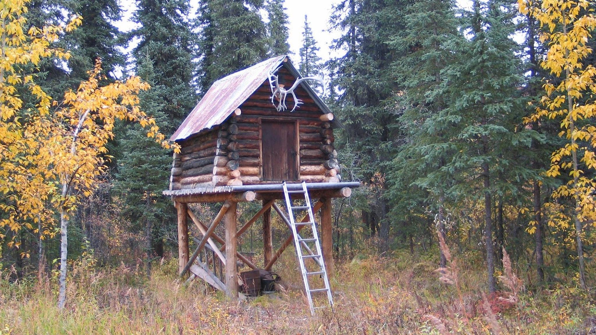 Moose_Creek_Shelter_Cabin_cache