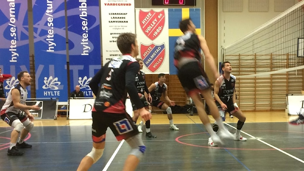 Bild från derbymatchen i herrarnas elitserie i volleyboll mellan Hylte/Halmstad och Falkenberg.