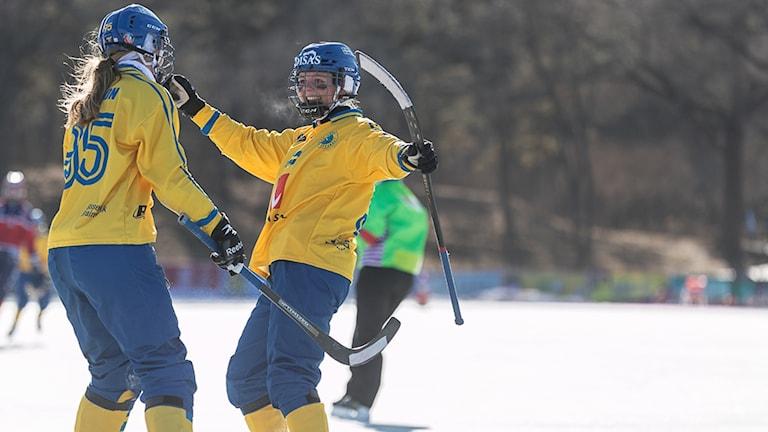 Sverige jublar efter en vinst i bandy-VM.