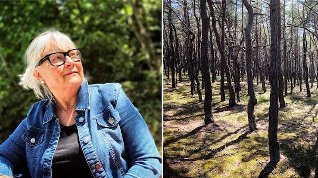 Elisabeth Strokirk besöker ofta naturreservat och har växt upp i Haverdals reservat i Halmstad.