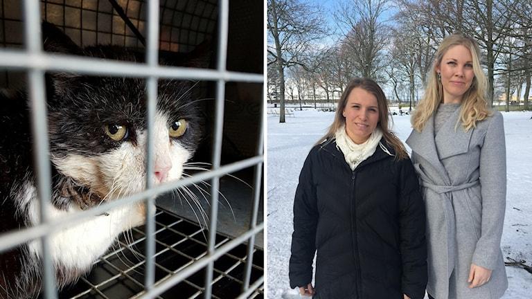 Marlene Sandblom, på Djurskyddet Norra Halland och Carina Bengtsson,djurskyddshandläggare på länsstyrelsen i Halland.
