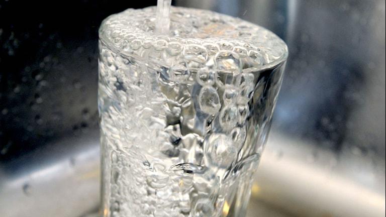 Dricksvatten ur kran. Foto: Janerik Henriksson/Scanpix