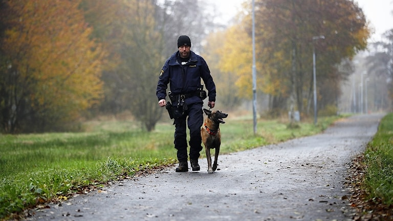 Polis söker med hund efter Dante.