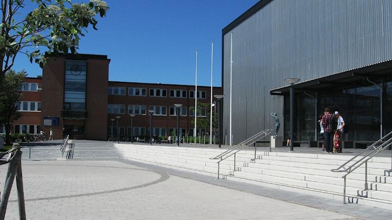 Falkenbergs gymnasium. Foto: Johan Davidsson/Sveriges Radio