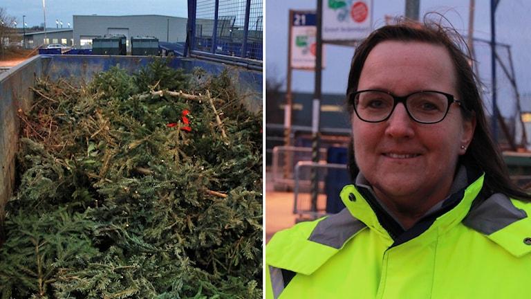 Åsa Montan, presskommunikatör på Hem, tipsar om julgransplundringen.