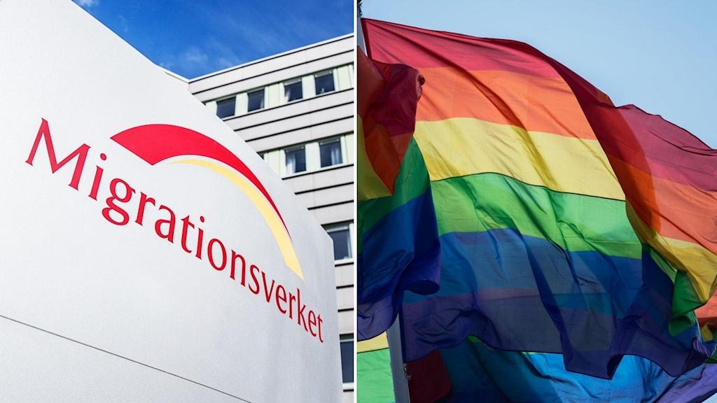 Migrationsverket och prideflagga