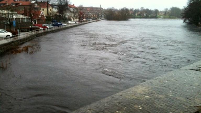 Vy från Tullbron i Falkenberg av översvämningen i Ätran. Foto: Per Qvarnström/Sveriges Radio