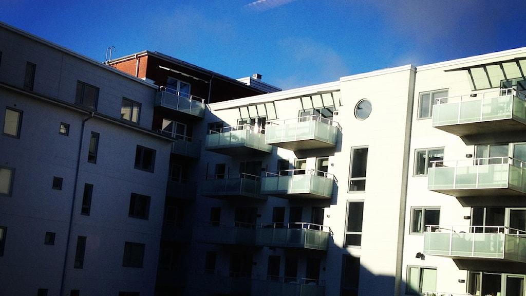 lägenheter Halmstad Foto: Sara Hector/Sveriges Radio