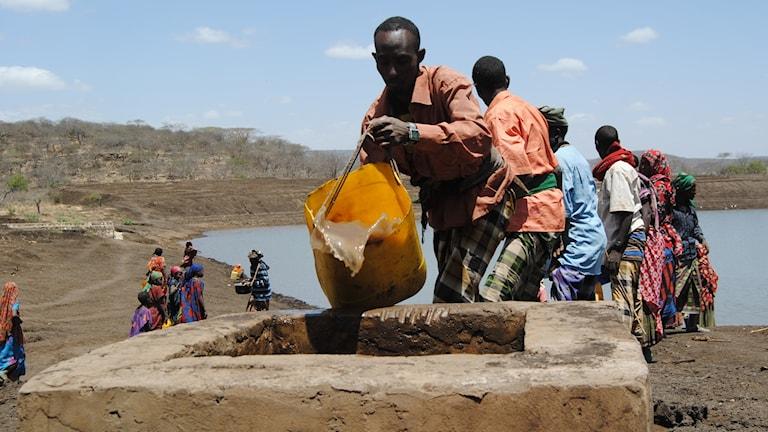 Arkivbild från 2012 då torkan vägrade släppa sitt grepp om Etiopien.