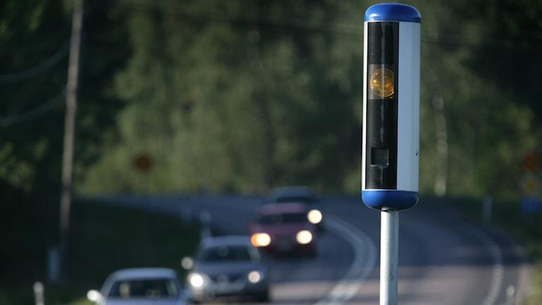 Flest fartdårar åker fast på riksväg 25. Foto: Fredrik Sandberg /Scanpix