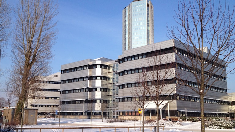 Högskolan i Halmstad. Foto: Sara Hector/Sveriges Radio