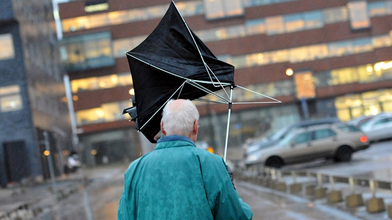Arkiv. Johan Nilsson/Scanpix