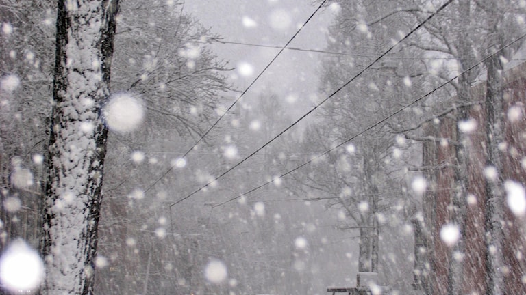 Arkiv. Snöfall ledde till plötslig halka. Foto: Scanpix