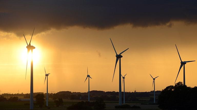 Arkiv. Solnedgång och regnmoln bakom vindkraftverken i Gårdstånga i Skåne Foto: Johan Nilsson / SCANPIX