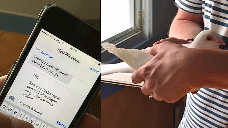 Snabbt och säkert med duv-SMS