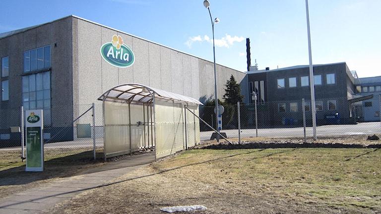 Fabriken i Falkenberg. Foto: Göran Frost/Sveriges Radio