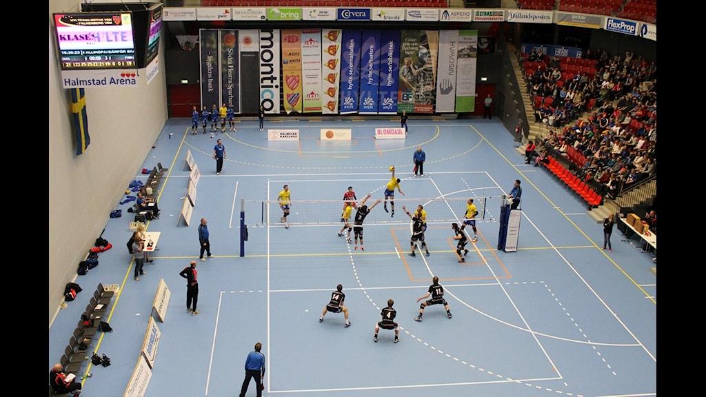 Ska det bli repris att Hylte/Halmstad och Falkenberg kommer mötas i finalen?