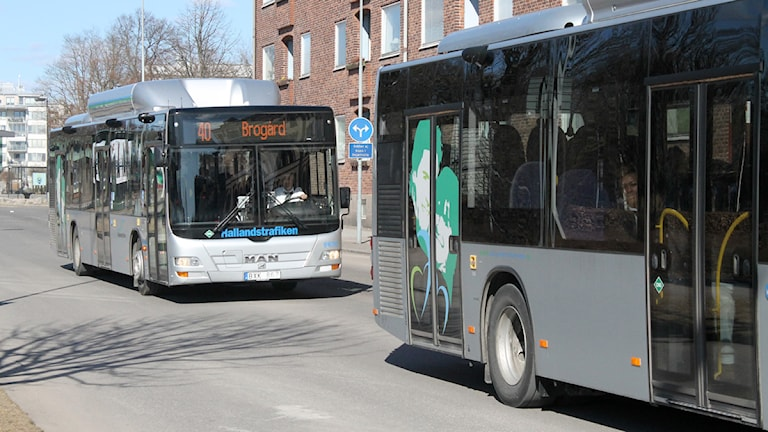 Bussar Hallandstrafiken Halmstad Foto: Sara Hector/Sveriges Radio