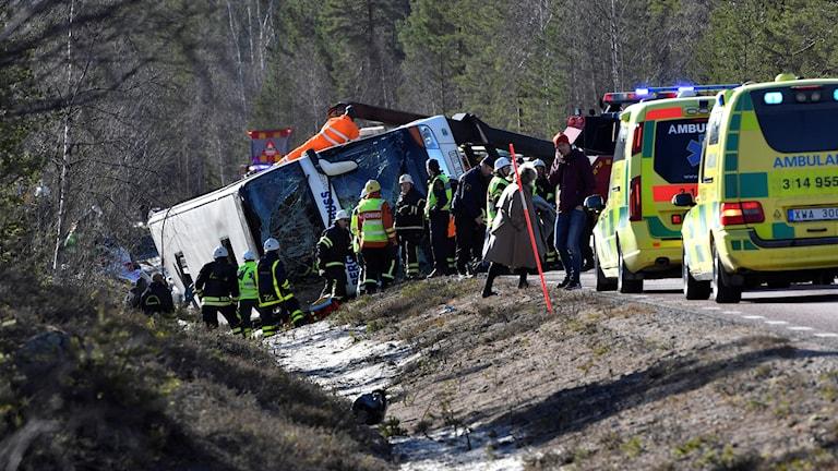En buss i diket, räddningspersonal och flera ambulanser på plats. Foto: Nisse Schmidt/TT