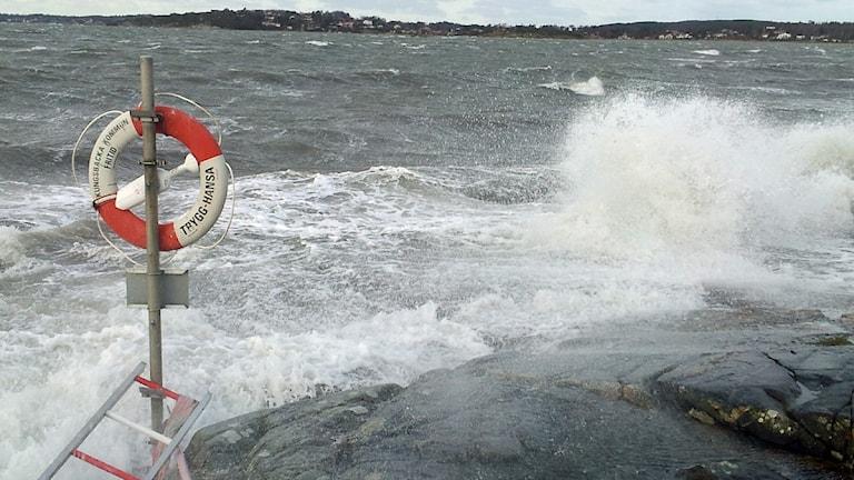 Det blåser längs kusten i Halland även på fredagen. Foto: Magnus Hagström/Sveriges Radio
