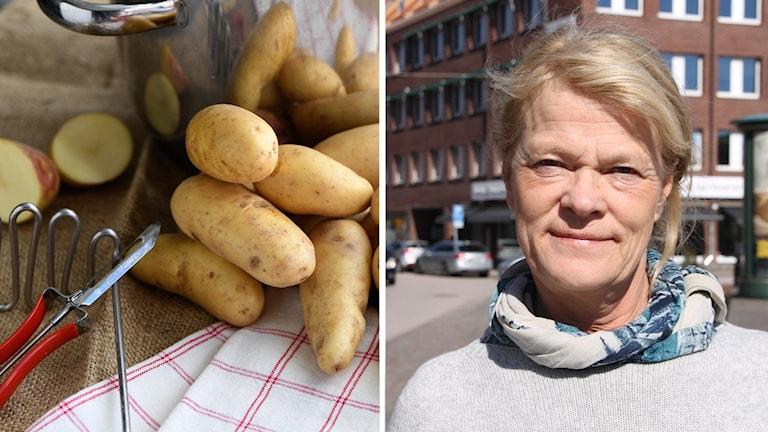 Potatis och AnnaKarin Hamilton.