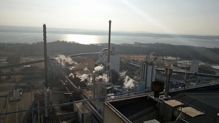 Skogskoncernen Södra investerar fyra miljarder kronor i Värö. Foto: Jonna Burén/Sveriges Radio