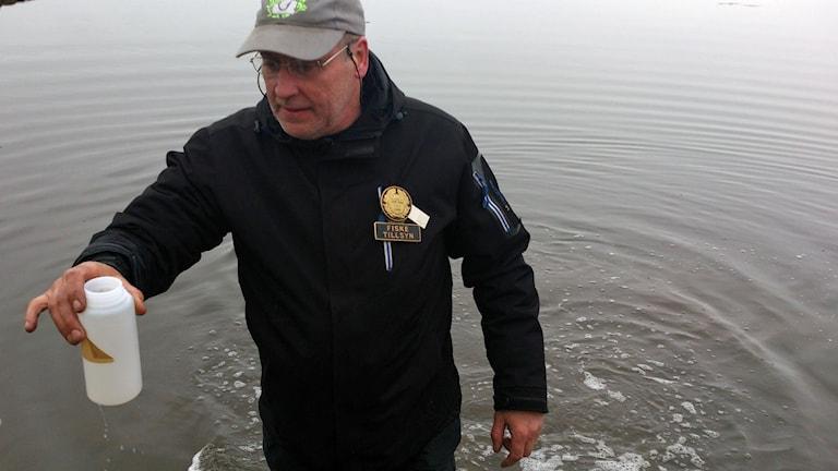 Länsstyrelsens fisketillsynsman Björn Nilsson som kommer upp ur vattnet med ett vattenprov. Foto: Magnus Hagström/Sveriges Radio