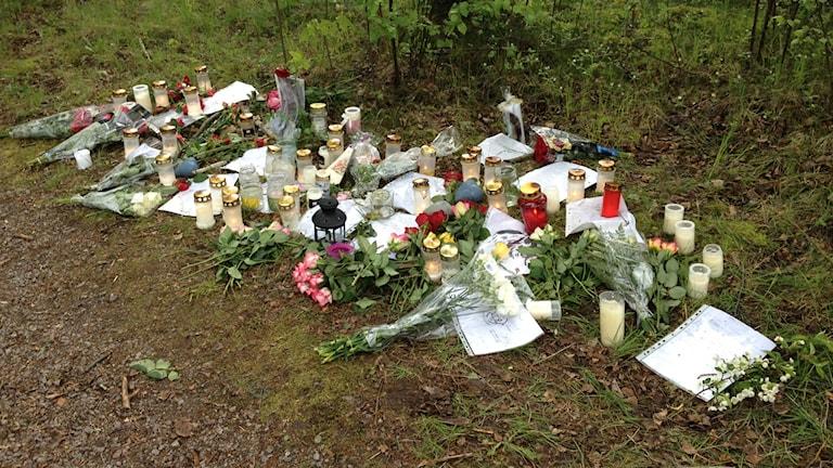 Platsen där den 16-årige pojken hittades död. Foto: Johan Sundström/Sveriges Radio
