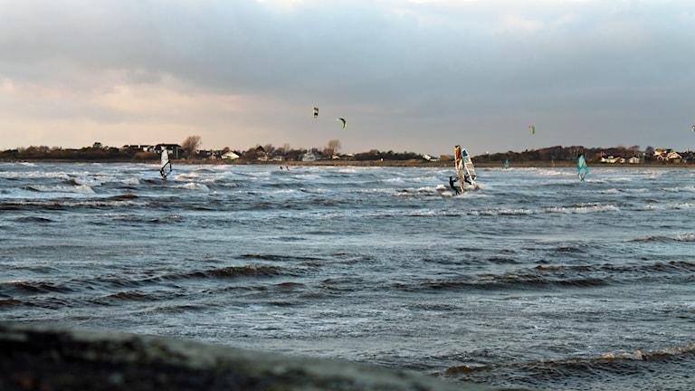 Kite- och vindsurfing i Apelviken. Foto: Henrik Martinell/Sveriges Radio