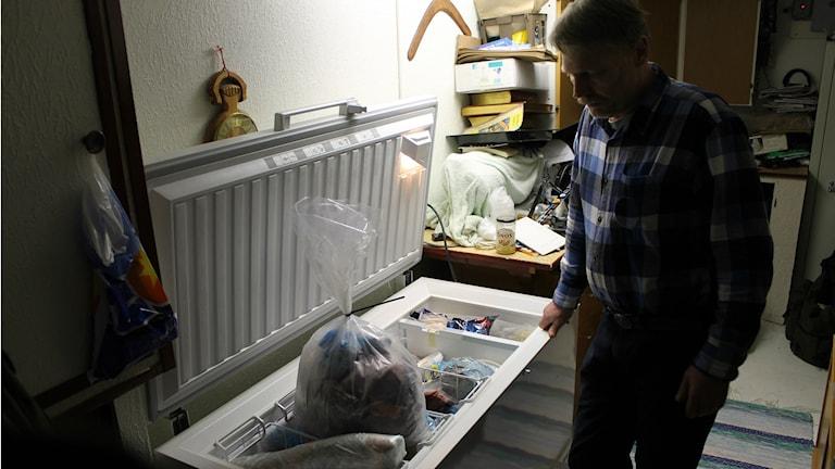 Många säljägare tvingas skaffa extrafrysar för att kunna ta reda på alla prover, däribland Stefan Nilsson. Säcken i frysen är ett prov från en säl. Foto: Henrik Martinell / Sveriges Radio