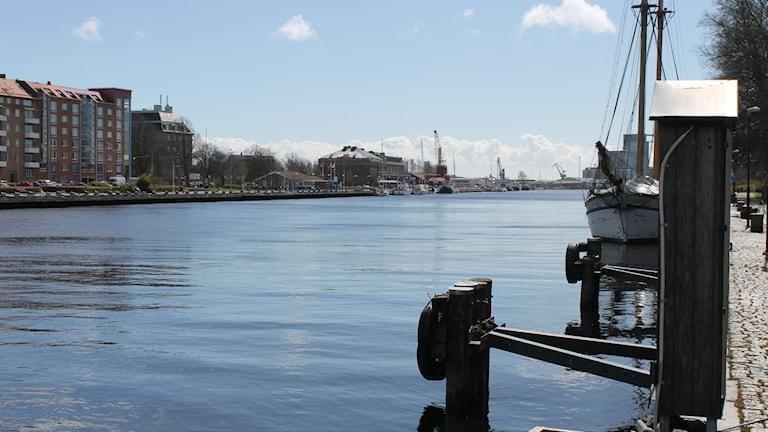 Förhöjda halter av ett högfluorerat ämne, som kan ha toxiska effekter, har hittats i vattnet vid Nissan och Viskans mynningar vid Kattegatt. Foto: Elin Logara/Sveriges Radio