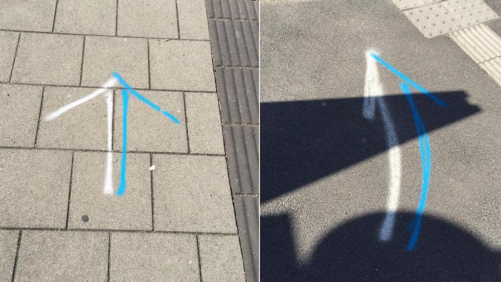 Blåvita pilar förbryllar Halmstadbor. Foto: Jonas Andersson
