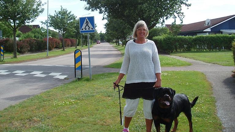 På hundpromenaderna blir Ywonne Ståhl ofta vägvisare.
