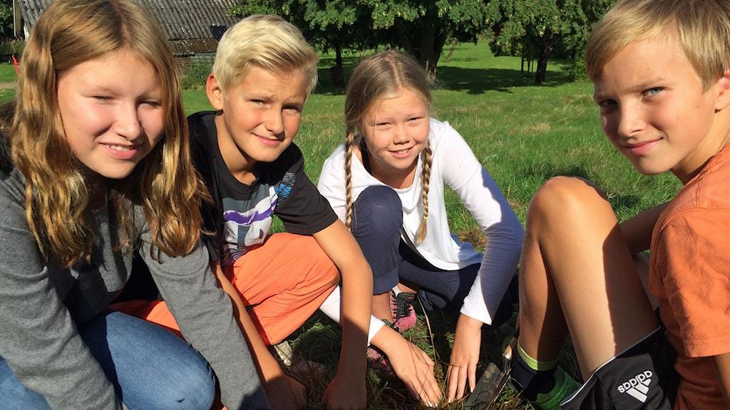 Femteklassarna på Stenstorpsskolan ska hjälpa forskarna förstå klimatförändringarna. Foto: Magnus Hagström/Sveriges Radio