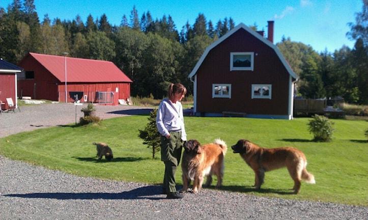 Id-hunden Pinja med matte maria Andersson