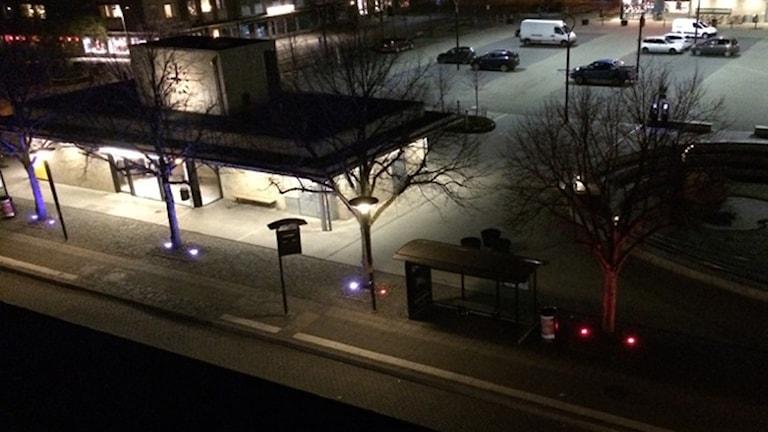 Igår kväll tändes ljusen på träden på Stortorget i Falkenberg också i trikolorens färger för att hedra offren i Paris. Foto: Falkenbergs kommun