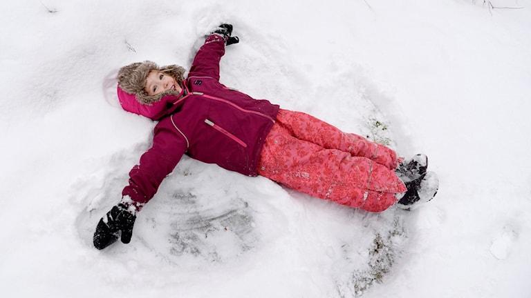 Längtar du efter snö? Till helgen kan det landa några snöflingor i södra delarna av Halland, men det är oklart om det räcker till för årets första snöängel eller inte. Foto: Jessica Gow/TT.
