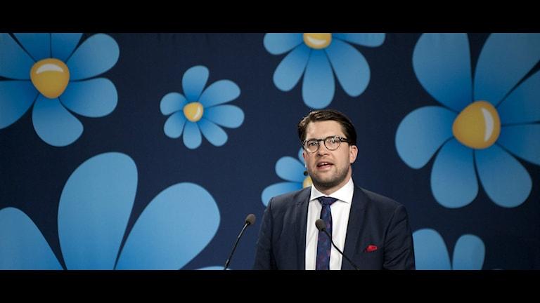 Sverigedemokraternas Jimmie Åkesson. Foto: Björn Lindgren/TT.