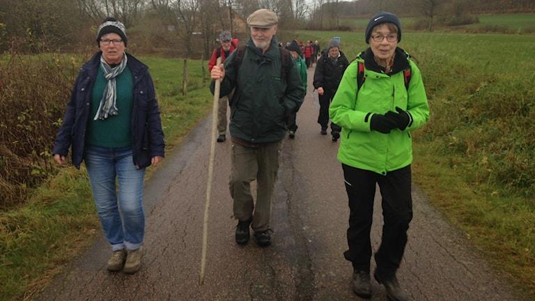 Varje torsdag samlas en grupp glada motionärer för att promenera i Vessigebro med omnejd. Margareta Bengtsson (till höger) var med och tog initiativet till torsdagsvandringarna år 2007. Foto: Therése Alhult/Sveriges Radio