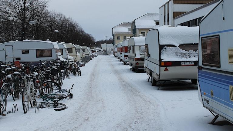 Husvagnar utanför Arena hotell. Foto: Henrik Martinell/Sveriges Radio.